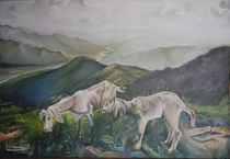 Goats over green hills. von jaspal singh chauhan