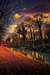 Canal Walk by Martin Crush
