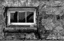 Basement Window von Tony Ramos