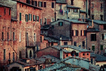 Tuscanian Town by David Pinzer