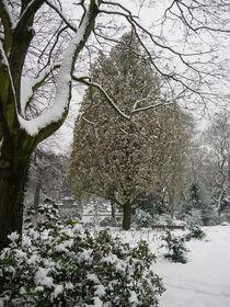 Winter im Bethmannpark von lorenzo-fp