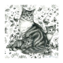 Cat-scene-2