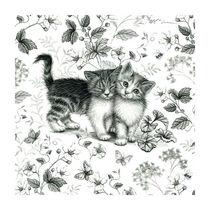 Cat-scene-3
