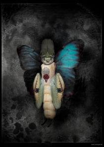 Der Staat der Insekten_Insekt 5 von Carsten Gude