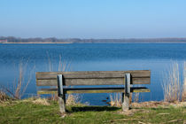 Bench at Het Twiske (recreation area) von Alex Voorloop