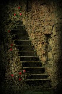 Treppe  by Elke Balzen