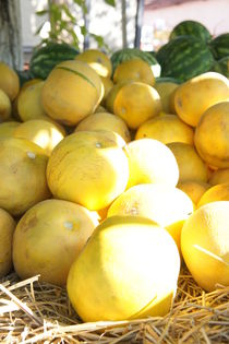 golden cantaloupes by Milena Zindovic