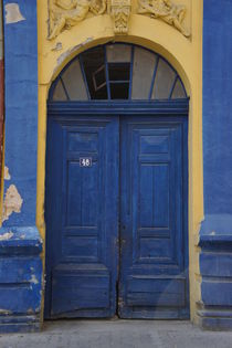 Blue Door by Milena Zindovic