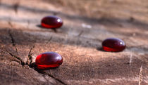 Rote Steine - red stones by ropo13
