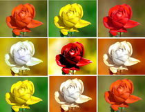 Harlequin Roses -1- by Christine  Hofmann