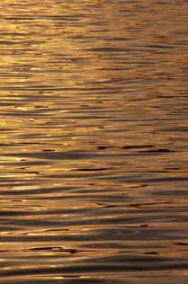 Goldenes Meer by fotaria