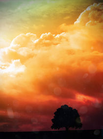 Apocalypse tree von Timon Patris