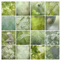 'Grüne Stille ' von Ursula Pechloff
