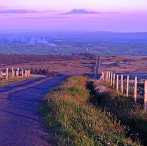 The Road to Pigeon Top by John McCoubrey