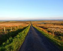 Road leading from Pigeon Top by John McCoubrey