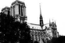 Notre Dame de Paris von Kelsey Horne