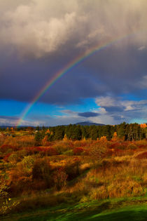 Canadian Rainbow by Louise Heusinkveld
