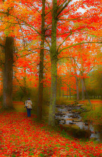 Walking by the Stream von Louise Heusinkveld