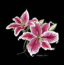 Stargazer Lillies by Karla White