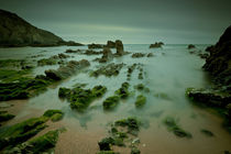 Low Tide Costa Vicentina Portugal by mark haley
