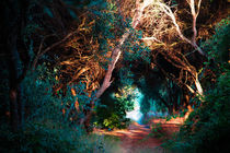 Olive-tunnel-artflakes