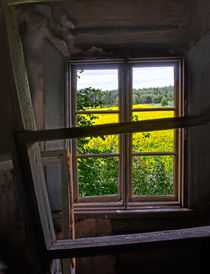 Abandonedview