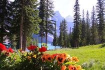 Idyllischer Bergsee Morain Lake in Kanada, Alberta by Marita Zacharias