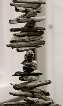 bastoncillo  von © Ivonne Wentzler