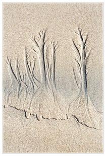20120726-mk3-4672-wald