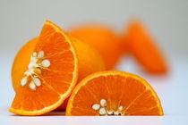 Orange-stock05
