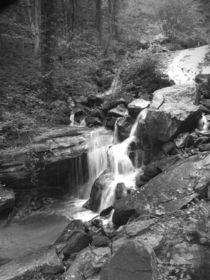 Climbing The Falls by © CK Caldwell