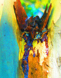 Summer Eucalypt Abstract 2 by Margaret Saheed