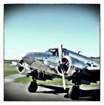 silbernes Flugzeug I von Frank Wöllnitz
