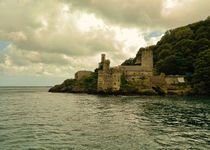 Dartmouth Castle by sharon lisa clarke
