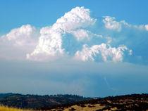 Pyrocumulus-cloud