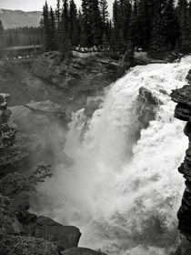 Canada-julio-2007-jasper-national-park-cataratas-athabasca-381-bwgg