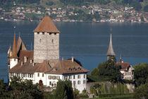 Schloss Spiez mit Schlosskirche von lorenzo-fp
