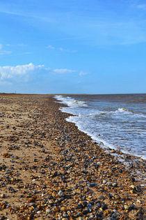Beach by Melissa Timpson