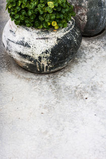 weathered white floor by Chris Christidis