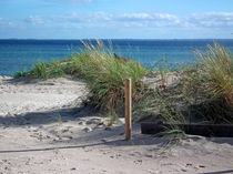 Ostsee Düne von Thomas Brandt