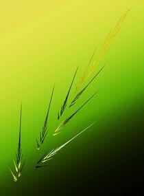 Simple-grain-001