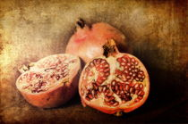 Pomegranates by Pauline Fowler