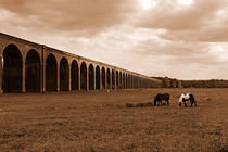 Harringworth Viaduct and Horses Grazing von Louise Heusinkveld