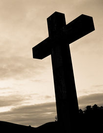The Cross by Lars Hallstrom