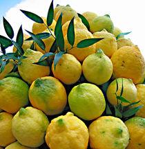 lemons by Leopold Brix