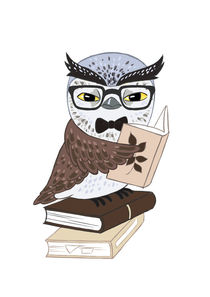 Professor Owl von freeminds