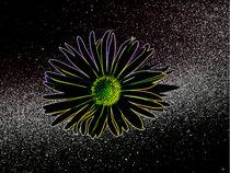 Flowerinspace