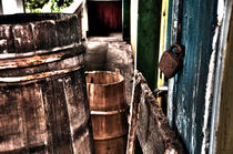 Drums and doors by Alexandr Verba