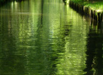 green impression by Franziska Rullert