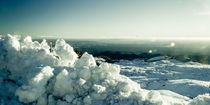 Turoa Icy Landscape by Stas Kulesh